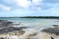 Middle Caicos wetlands